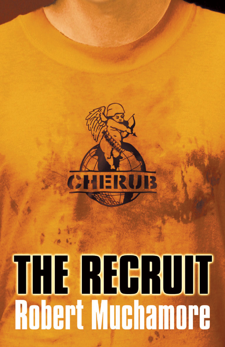 Image result for The Recruit cherub series