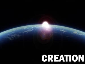 Biblical Theology Magnets Creation